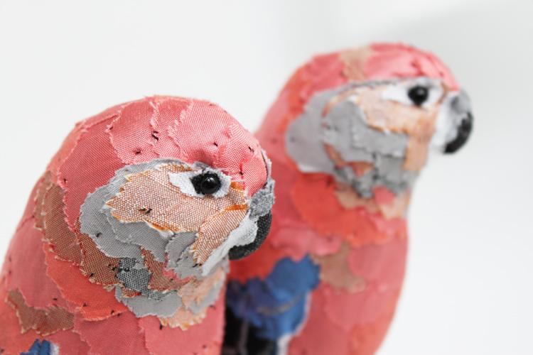 pairbourkesparakeet_sml