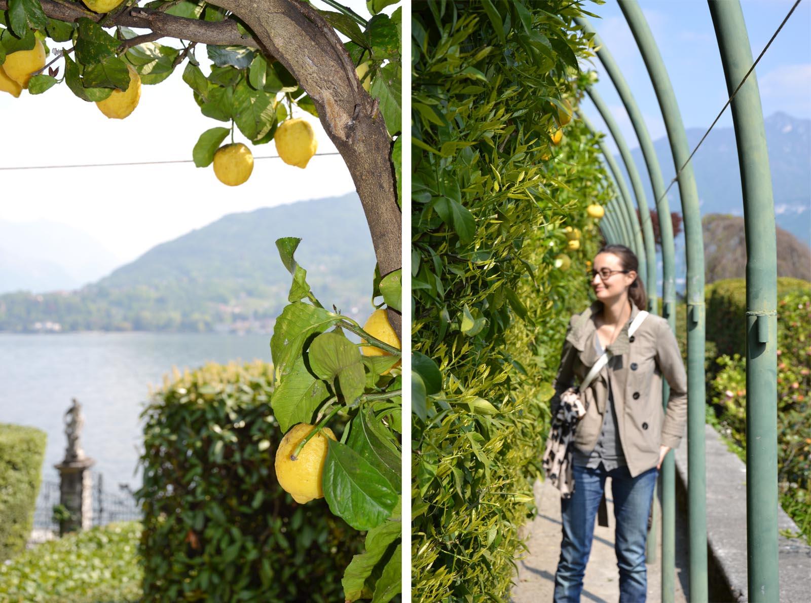 Villa-Carlotta-Gucki-Lemon