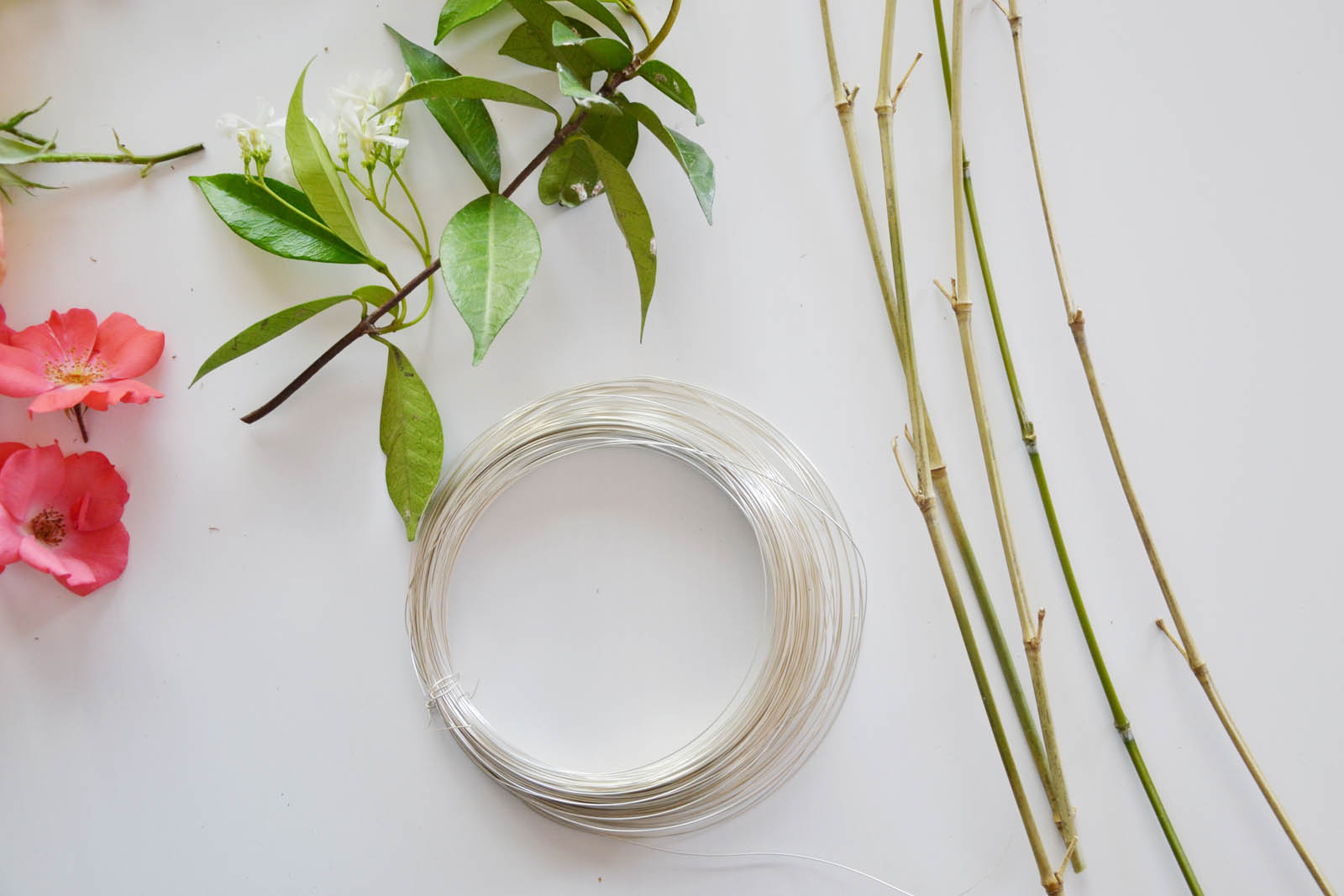 Ghirlanda-Viridea-occorrente