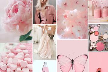 rosa pantone