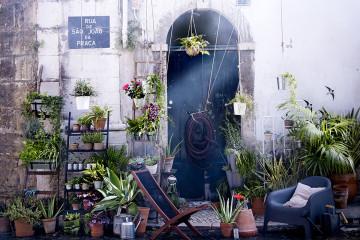 ikea piante angolo verde