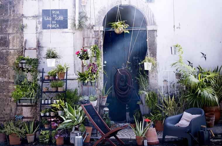 Porta Piante Ikea: Piante finte da arredo migliore ispirazione per il design ...