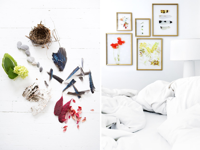 mary-jo-hoffman-collection-westelm