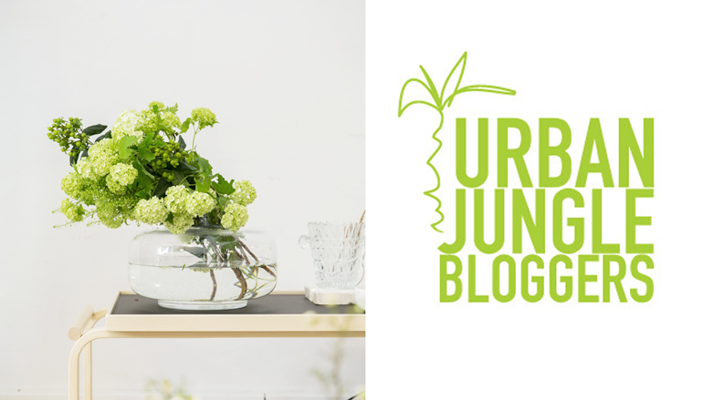 urban-jungle-bloggers-glasses