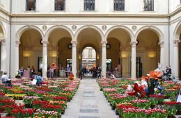 Palazzo Turati, la sua installazione con 15.000 tulipani