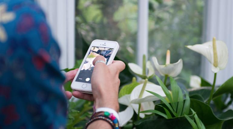 plants-app