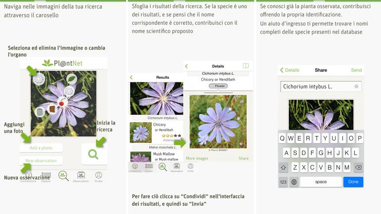 plantnet app-piante