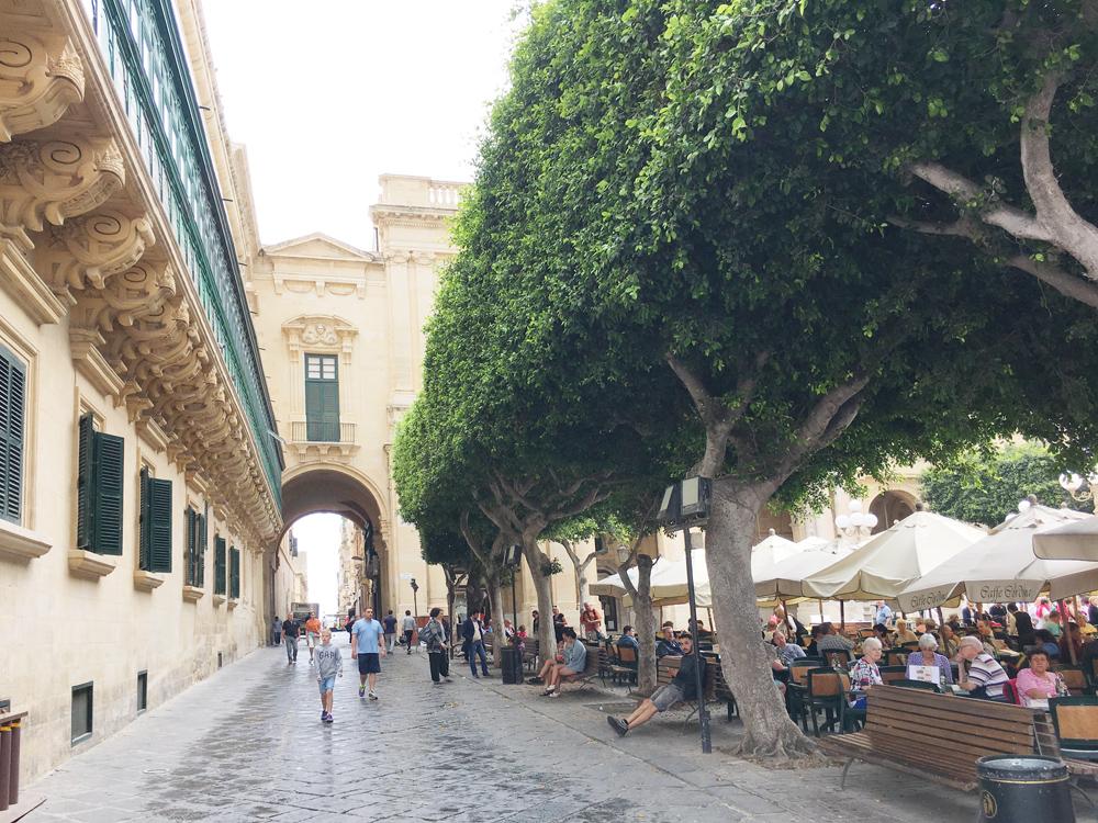 malta-valletta-piazza-alberi