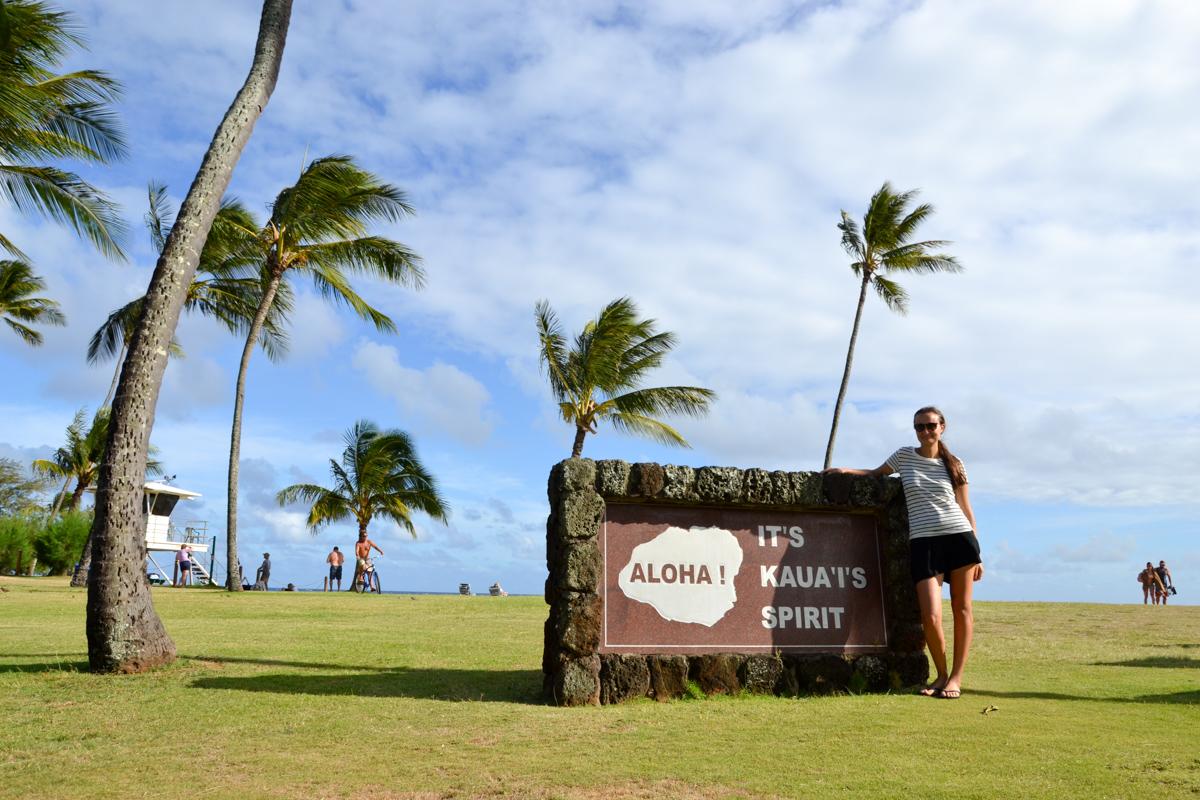 kauai-beach-hawaii-aloha