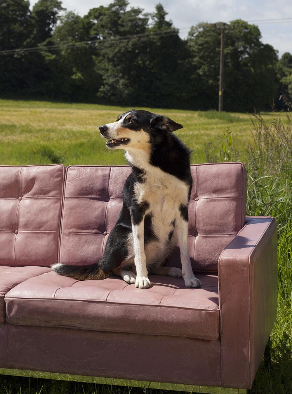 katie_on_sofa