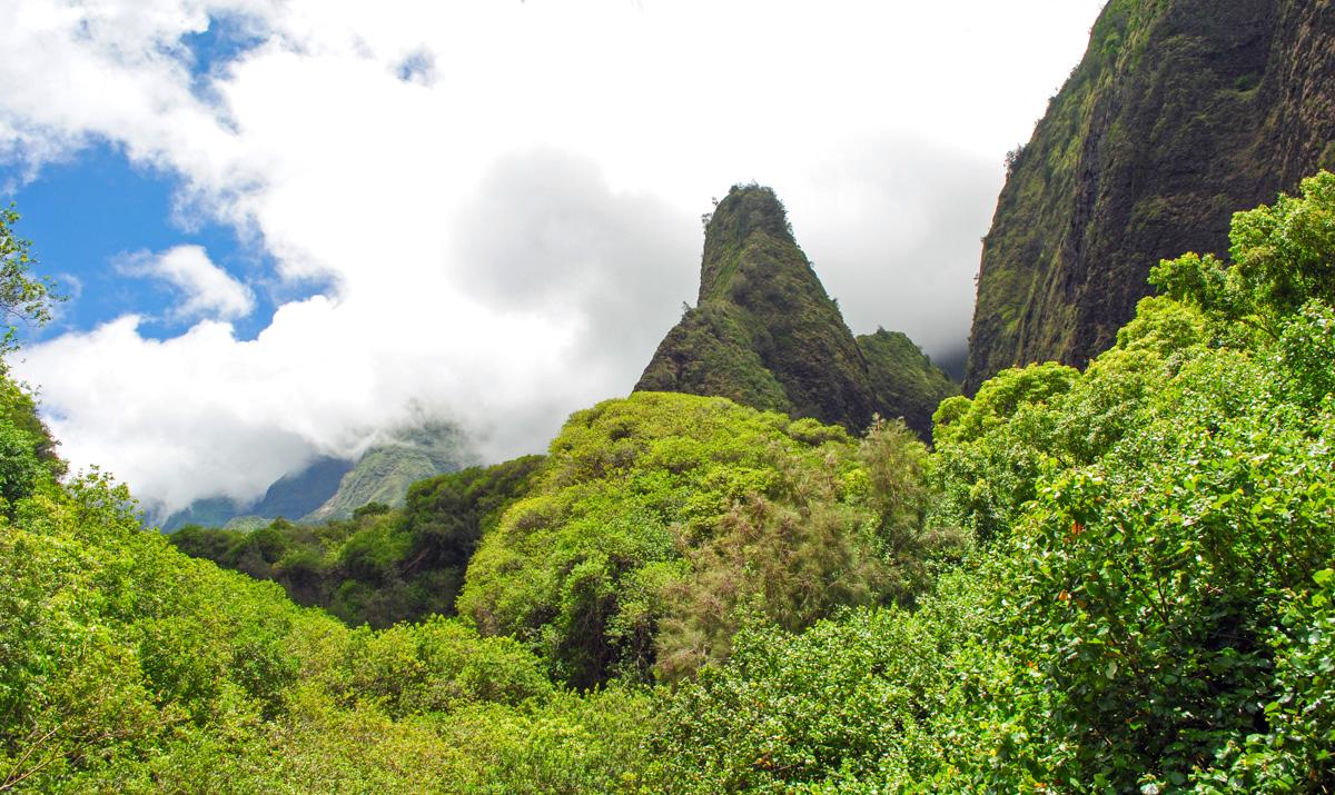 maui-hawaii-bedandbreakfast-1
