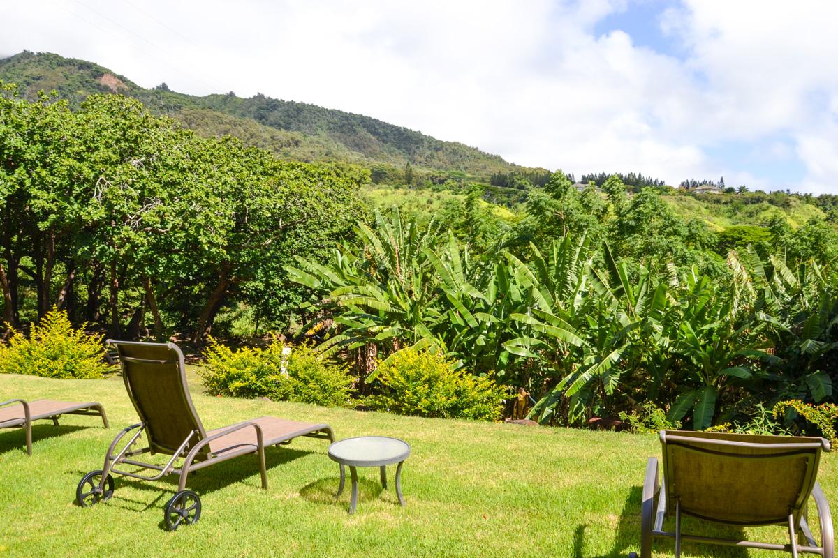 maui-hawaii-bedandbreakfast-27