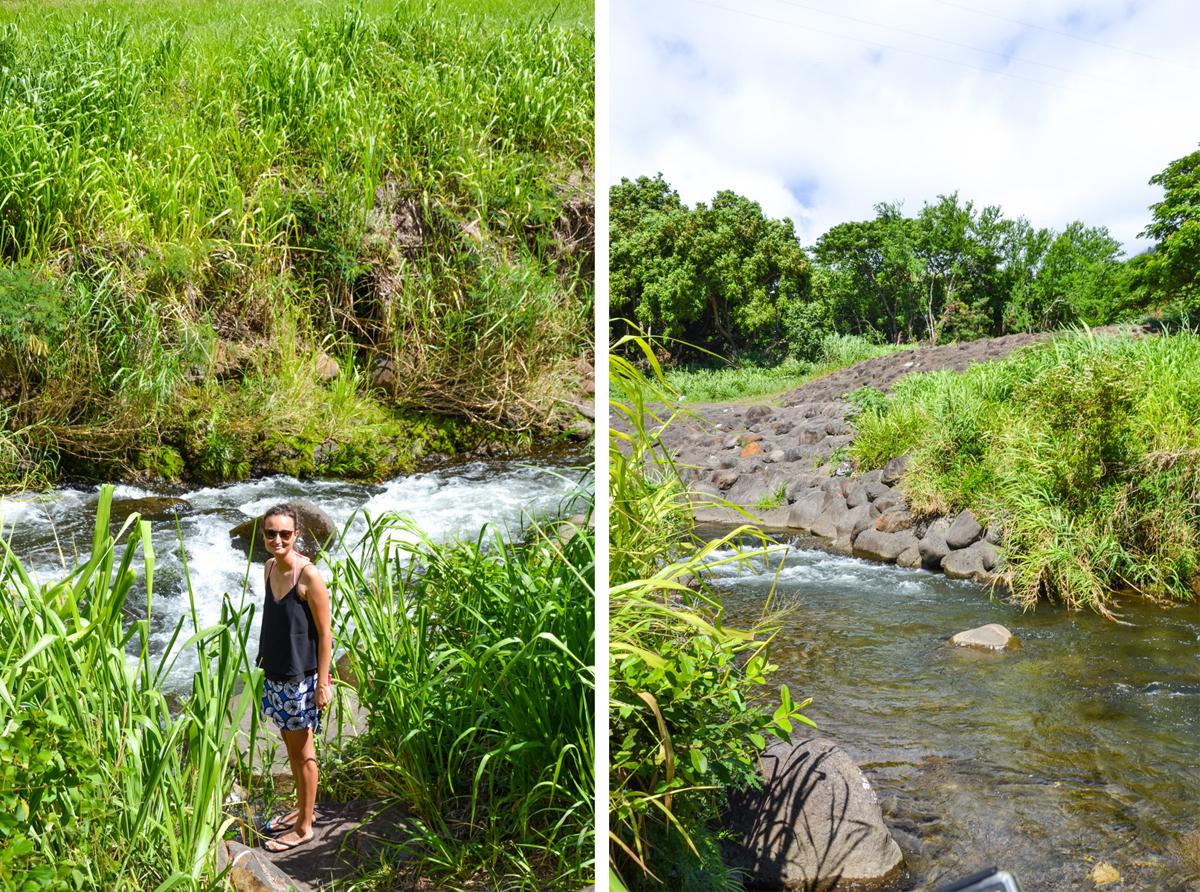 maui-hawaii-bedandbreakfast-37-copy