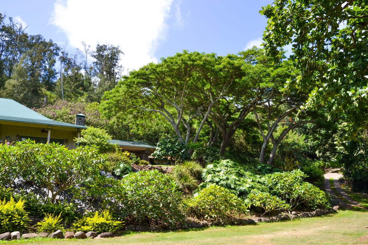 maui-hawaii-bedandbreakfast-40