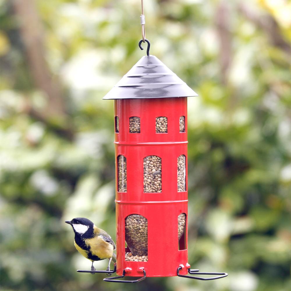 bird-feeder-wildlife