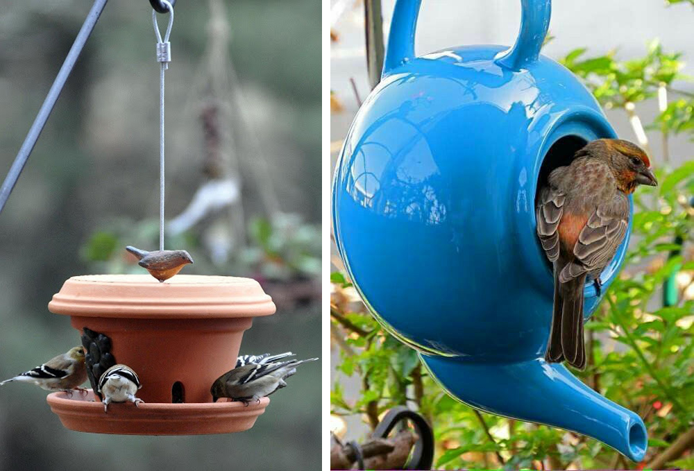 mangiatoia-uccelli-fai-da-te