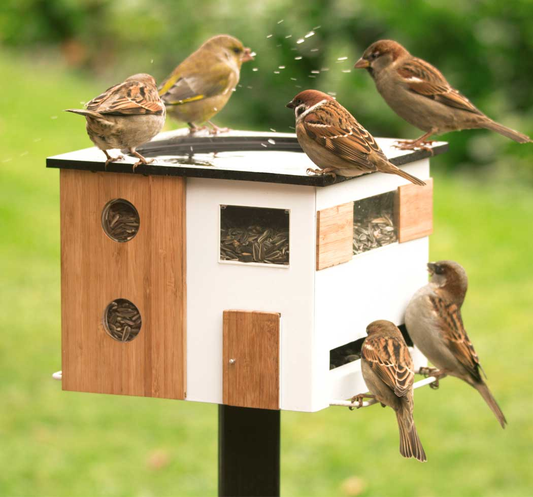 Picture of WG350 Birdfeeder with bath white in environment with bird. Mounted on pole