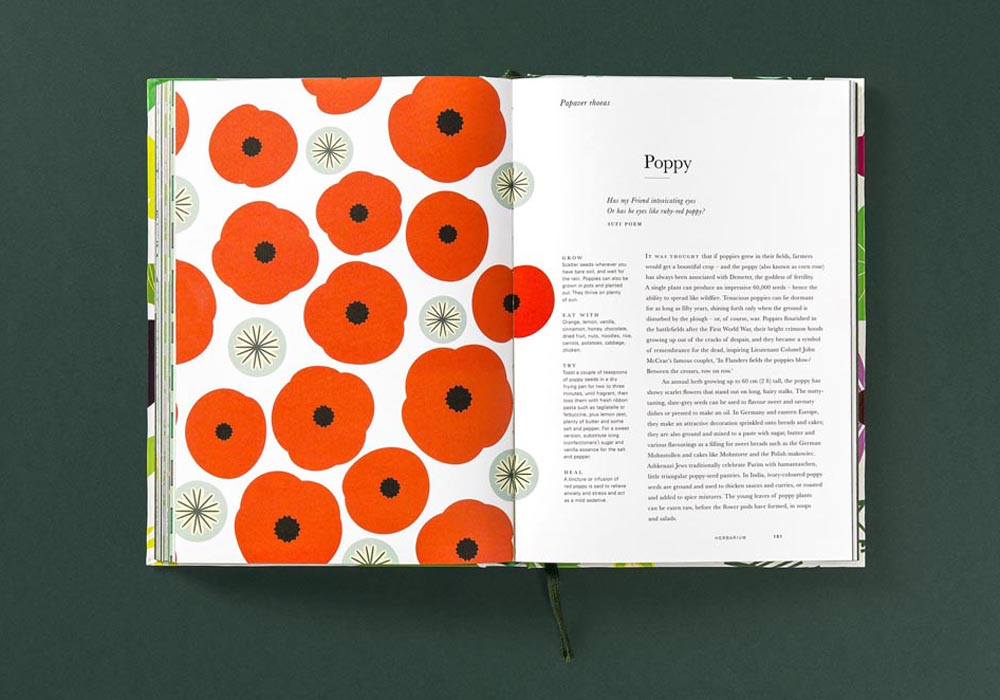 herbarium-poppy-web