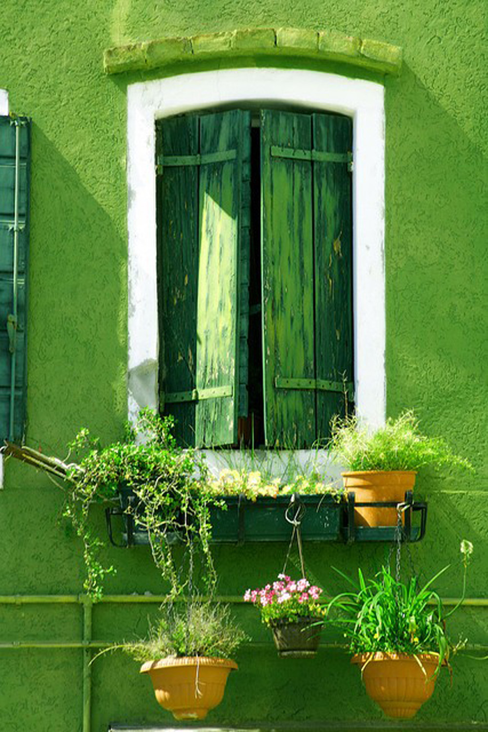 green-window