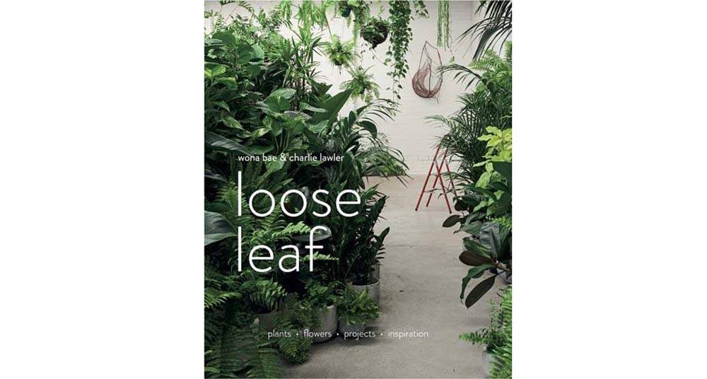 loose-leaf