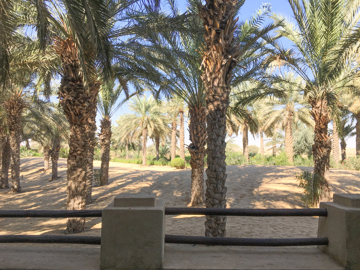 bab-al-shams-desert-resort-23