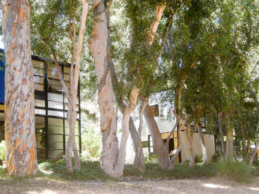 Eames-home-los-angeles-6