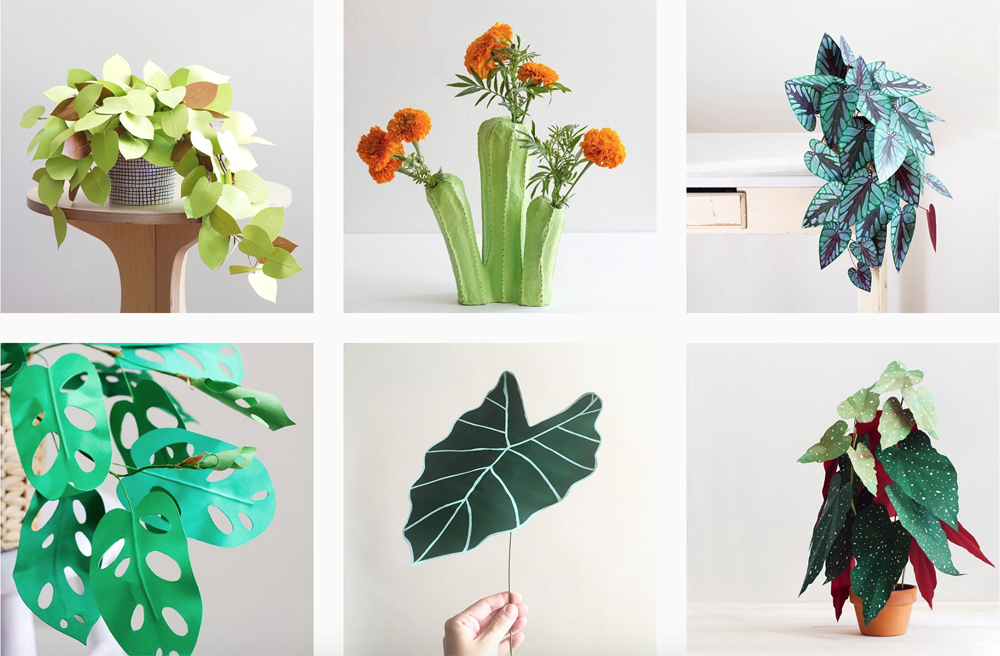 paper-plants-instagram