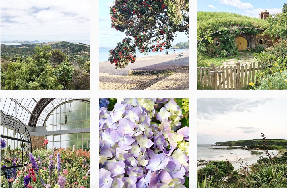 natura-instagram