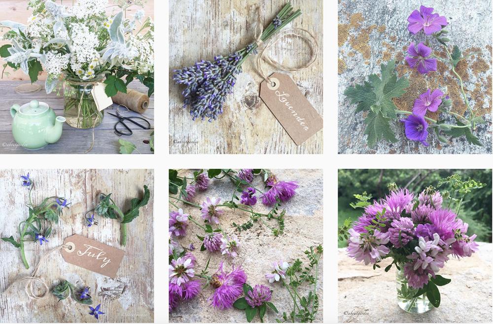 fiori-instagram