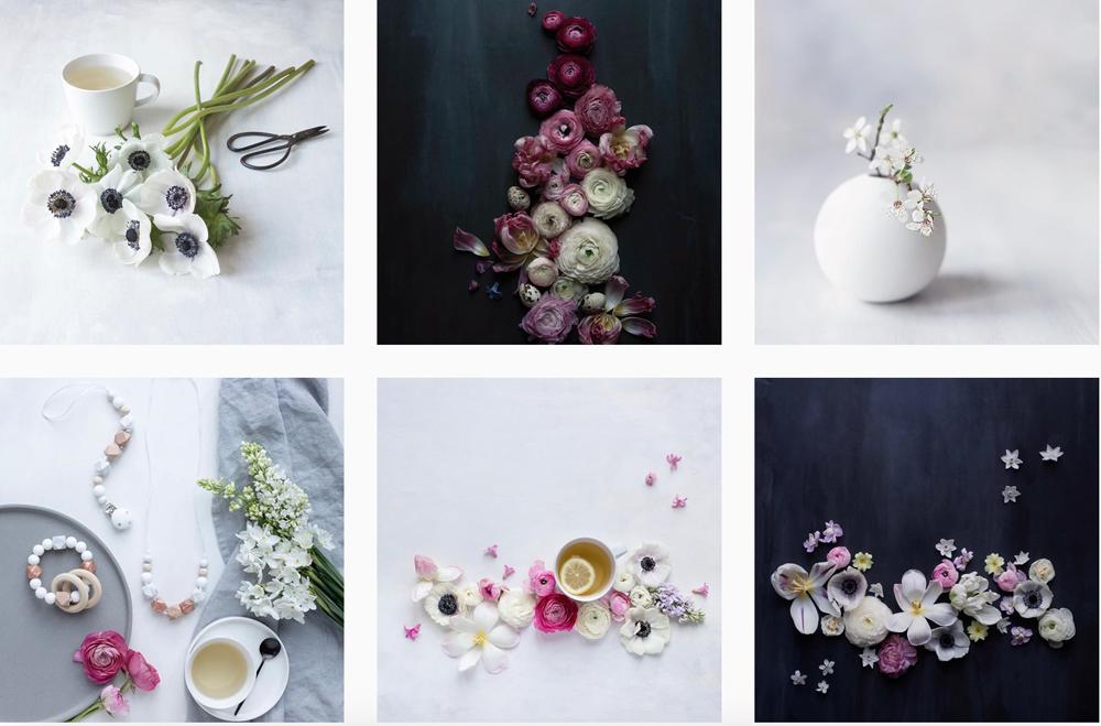 cristina-colli-fiori