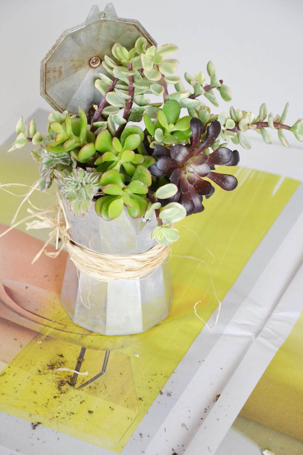 Vasi sospesi per piante fai da te vasi per piante for Vasi sospesi