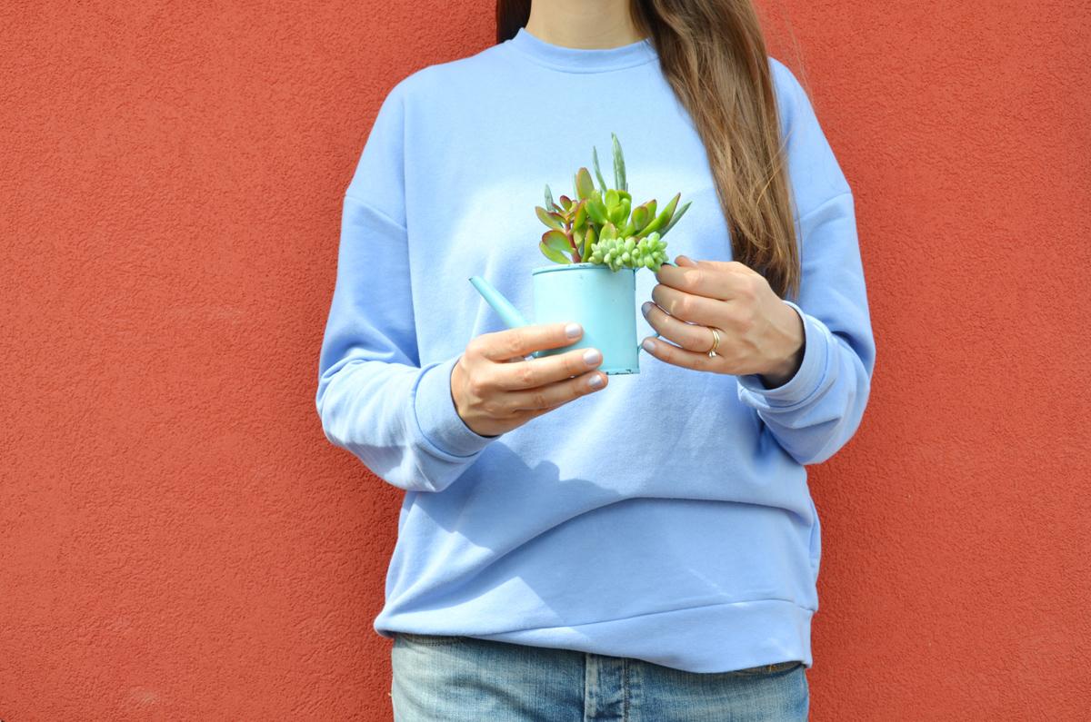 piante-grasse-vasi-fai-da-te-5