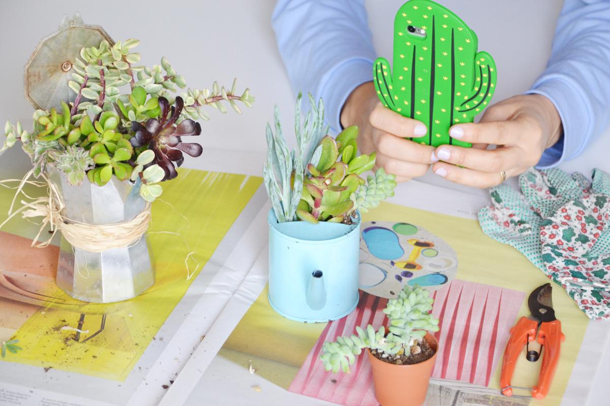 piante-grasse-vasi-fai-da-te-7