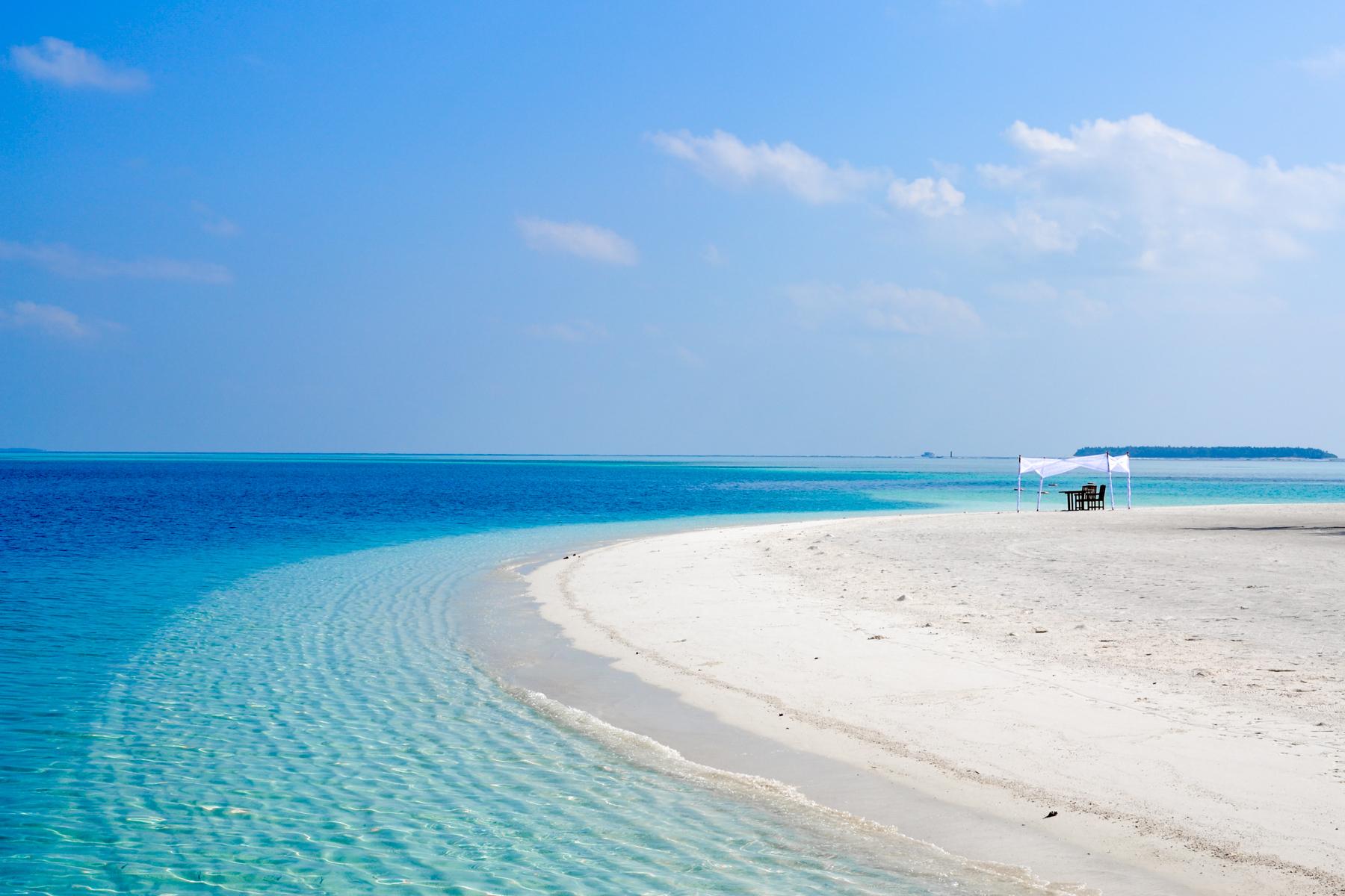 The Dream Job Does Exist: ALuxury Maldives Resort IsHiring aBookseller