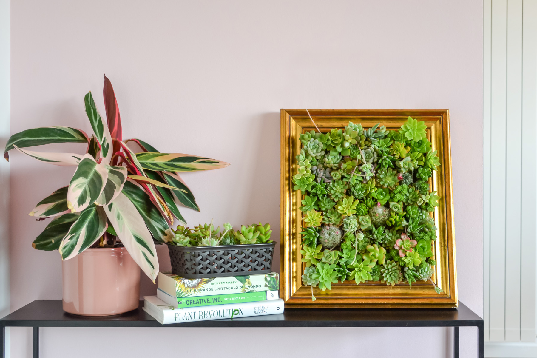 Upcycling An Old Frame How To Make A Beautiful Vertical Succulent Garden Diy